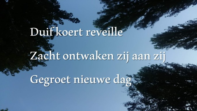 Haiku_12