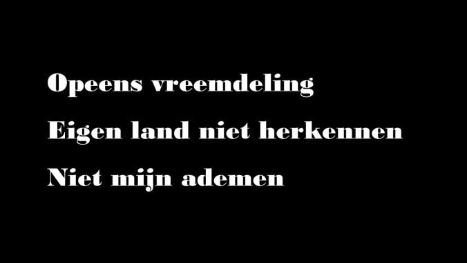 Haiku_14