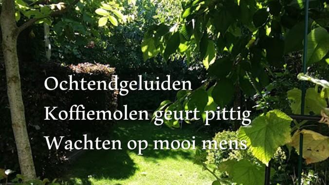 Haiku_18