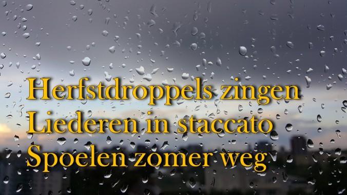 Haiku_23